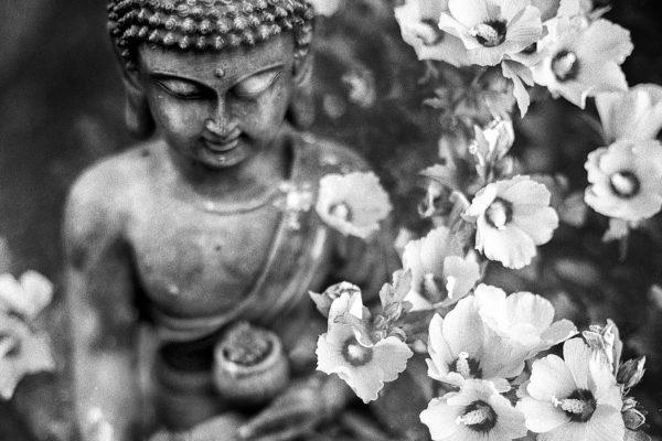CIAŁO – niedoceniany skarb – artykuł Julii Marcinowskiej