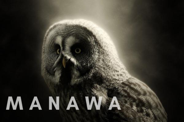 Spotkanie z Wewnętrzną Mądrością – MANAWA – artykuł Ewa Piwnicka