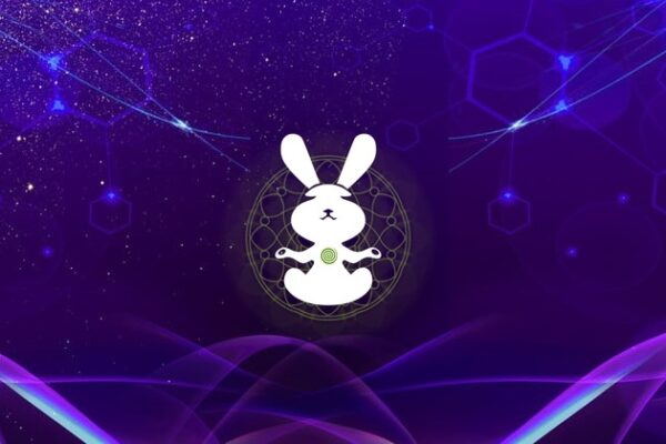 """22-23.05 """"Follow the White Rabbit"""" – Warsztaty"""